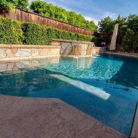 Freeform Swimming Pool 15-01
